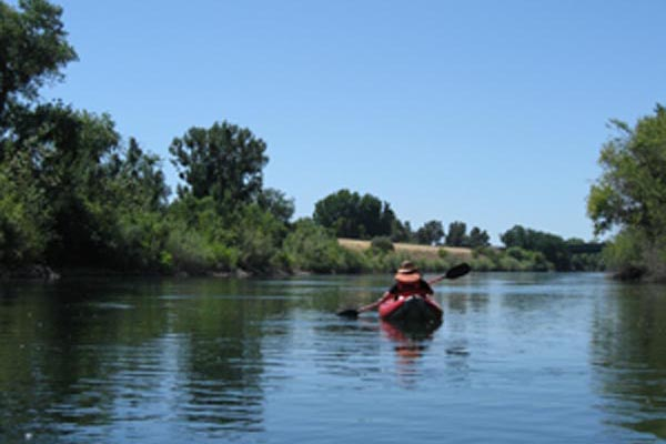 Our Work--Rivers Under Threat-American River